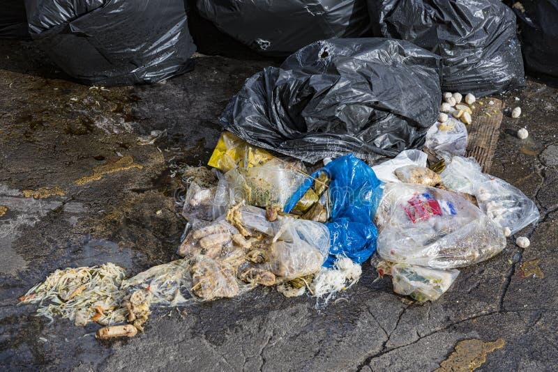 Äckla avfall som fylls med matrester som hade krossats av hjulen royaltyfri fotografi