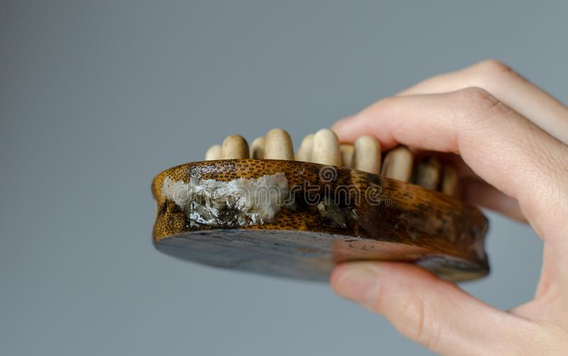Äckla svampen på kvinnaträmassageborste close upp Huslokalv?rdbegrepp arkivbild