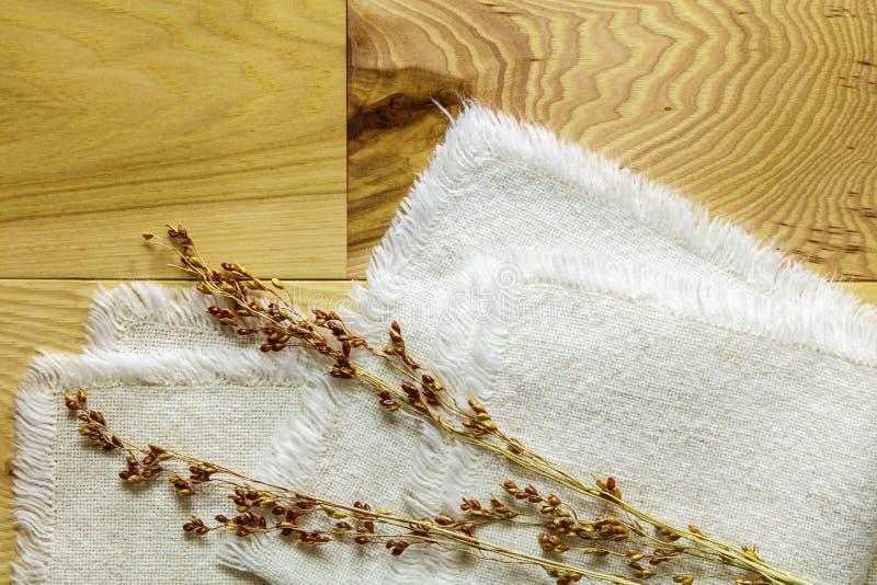 Ädelträhickoryn stiger ombord torkduken för hirskornstammar arkivbild