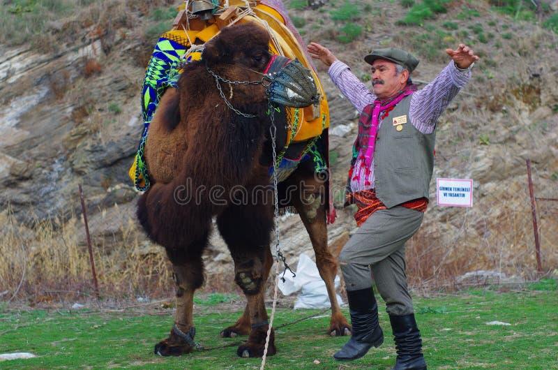 Ägäischer Volkstänzermann, der nahe bei einem Kamel durchführt lizenzfreies stockbild