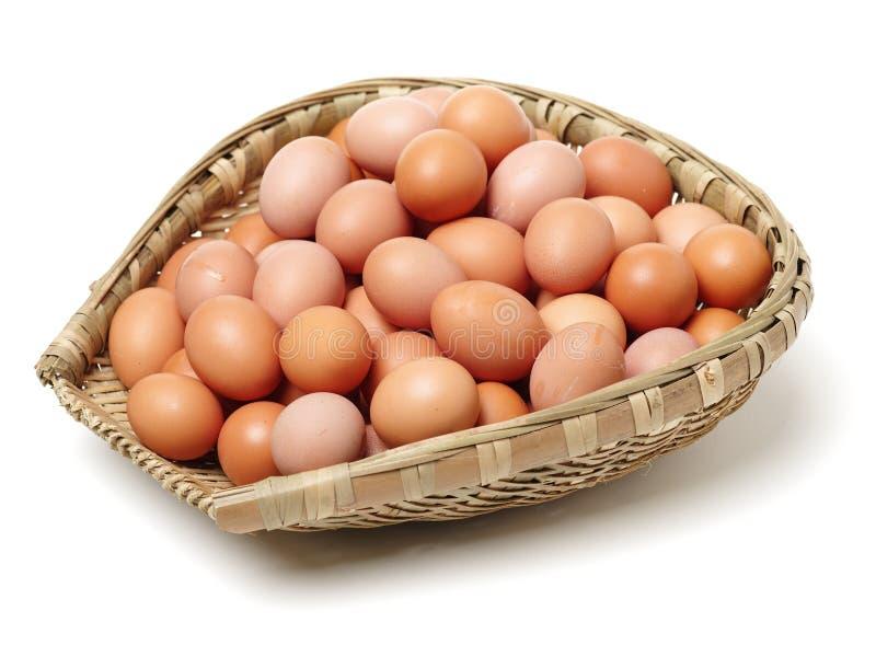 Äggägget i korgen arkivbild