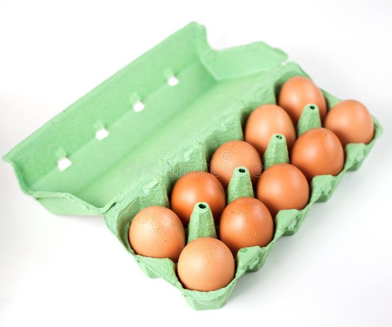 Ägg arkivfoton