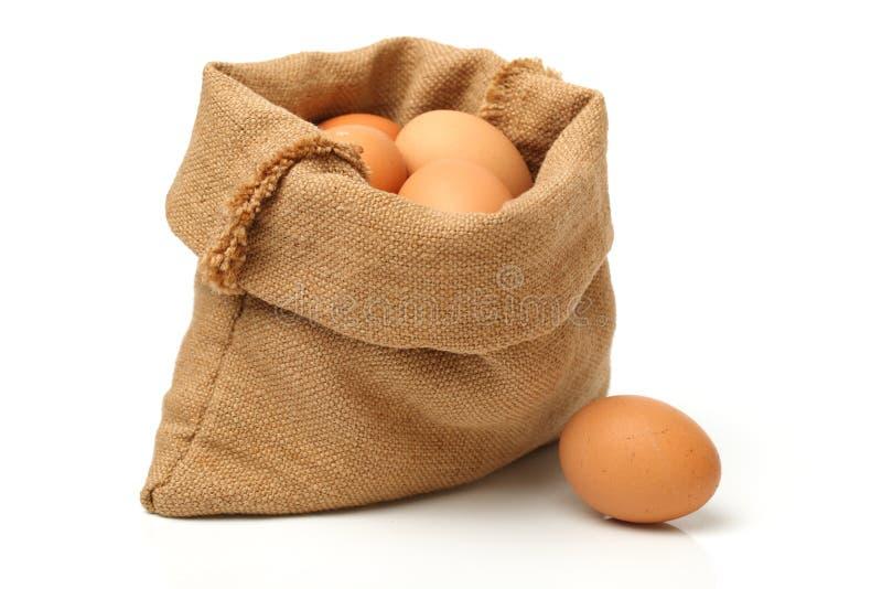 Ägg: Bruna ägg arkivfoton