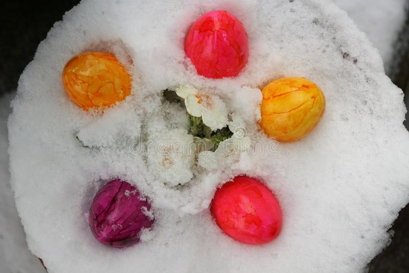 Ägg för påsk royaltyfria foton