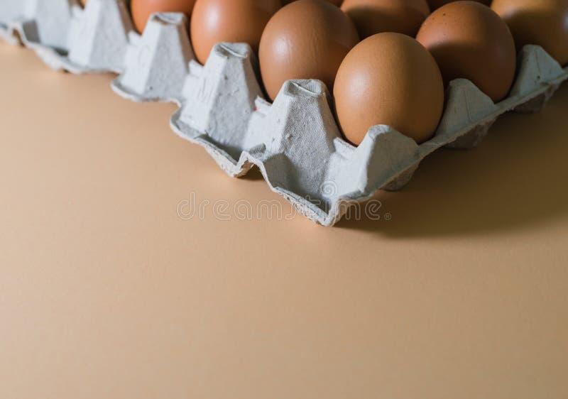 Ägg fegt ägg arkivbild