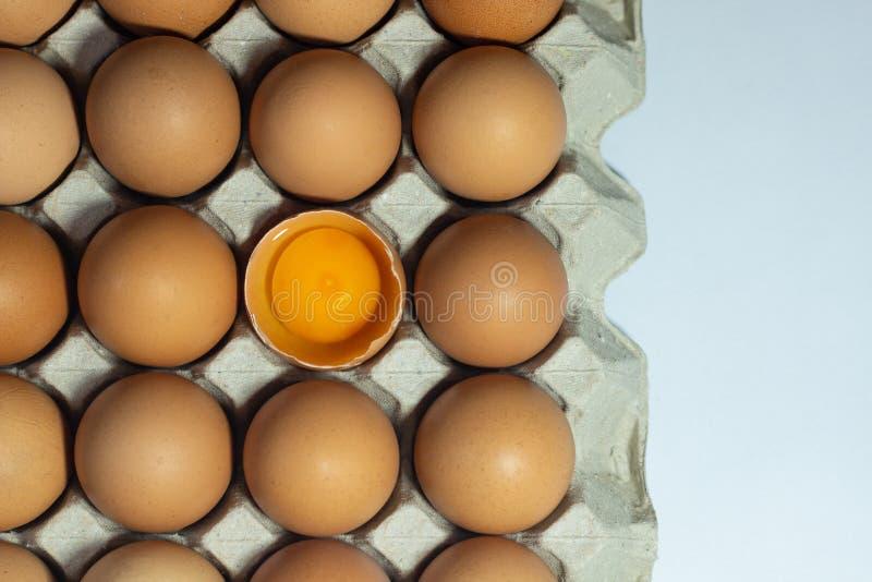 Ägg, i att förpacka för lådaask arkivfoton