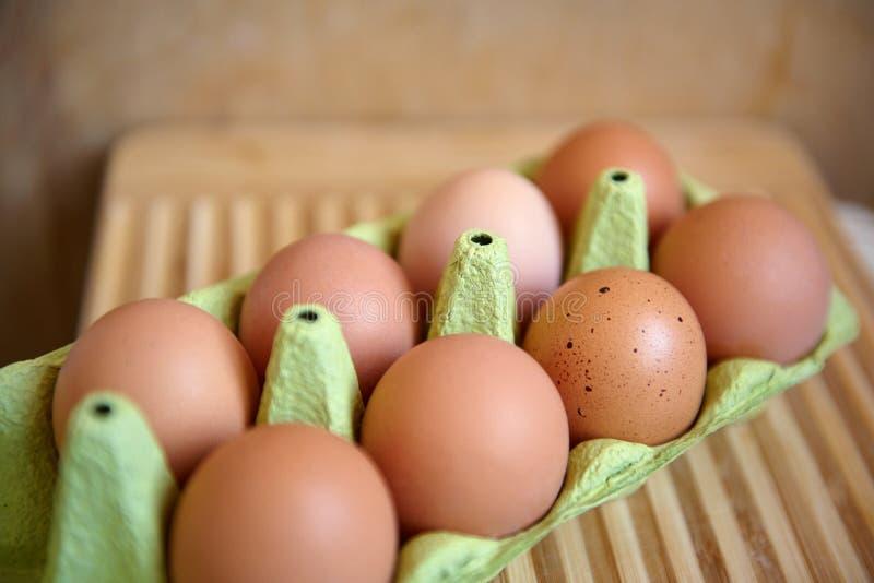 Ägg i emballage arkivfoton