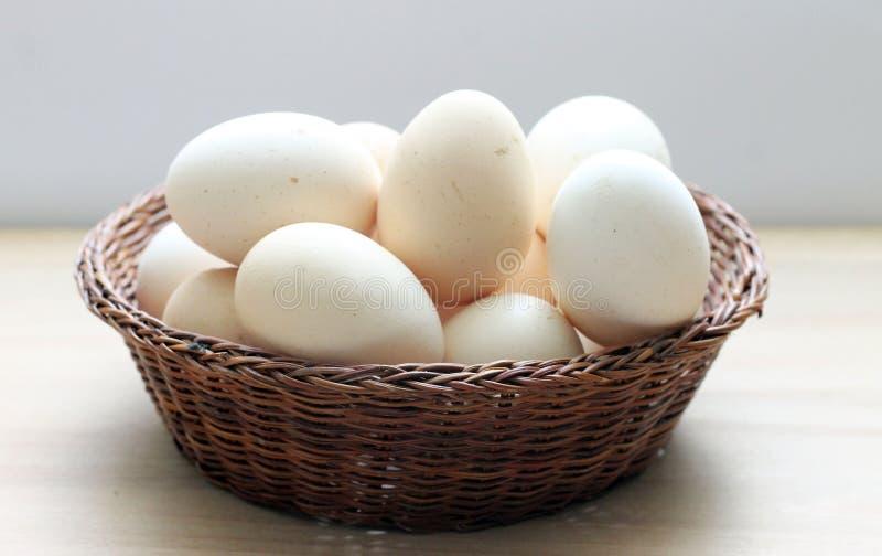 Ägg i en korg fotografering för bildbyråer