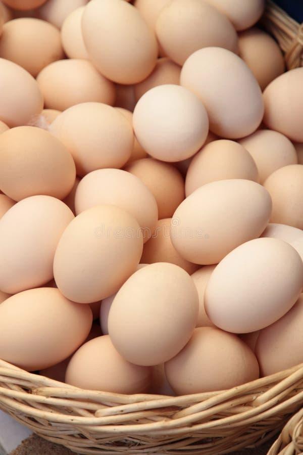Ägg i en korg, slut upp fotografering för bildbyråer