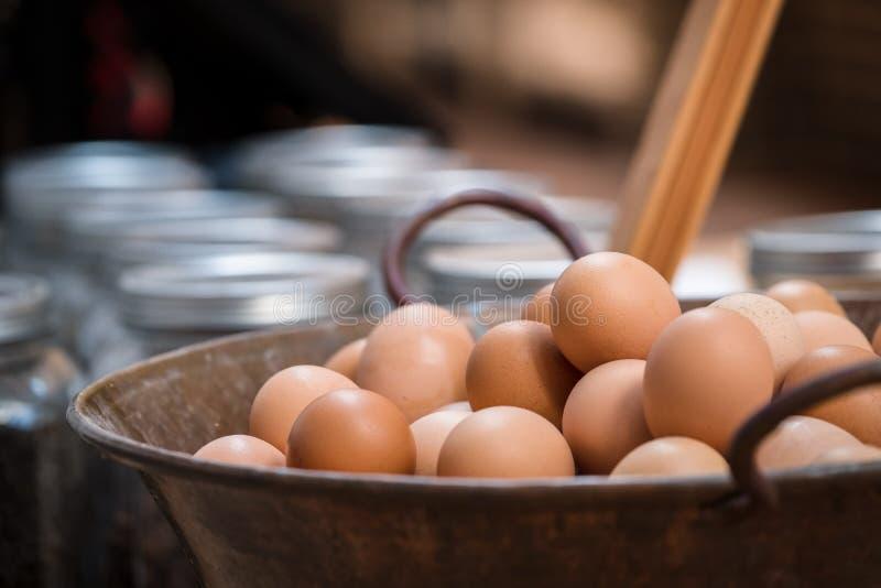 Ägg i en kruka fotografering för bildbyråer