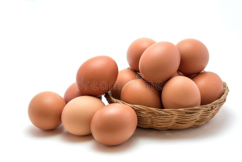 Ägg i korg royaltyfria bilder