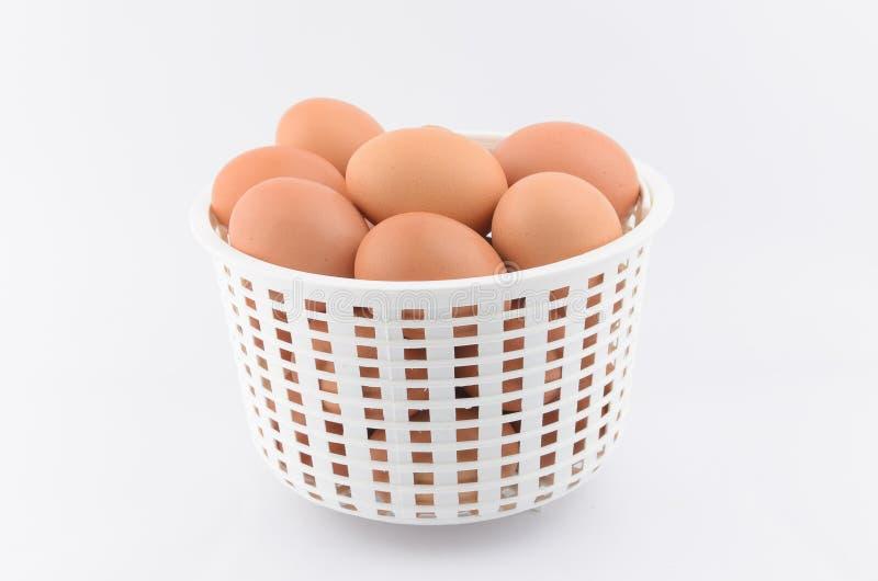 Ägg i korg royaltyfria foton