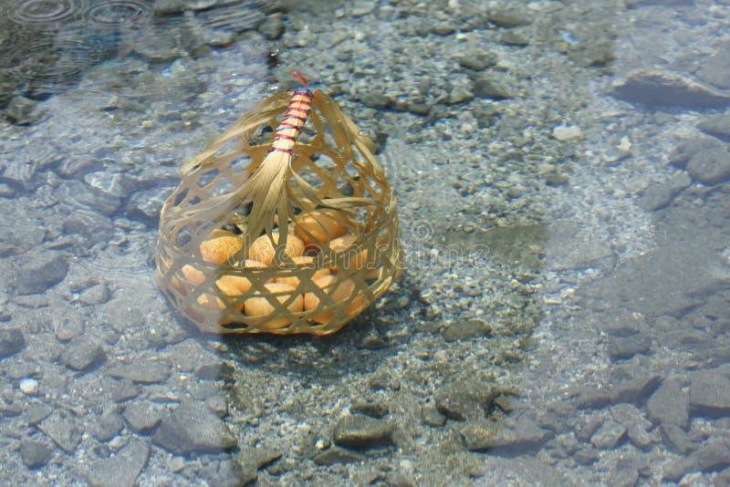 Ägg i korg Kokat i Hot Springs fotografering för bildbyråer
