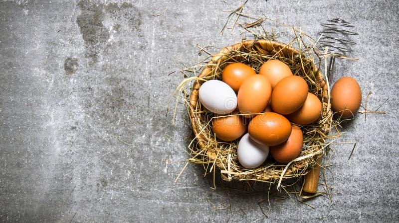Ägg i korgen och höet På stenbakgrund royaltyfri fotografi