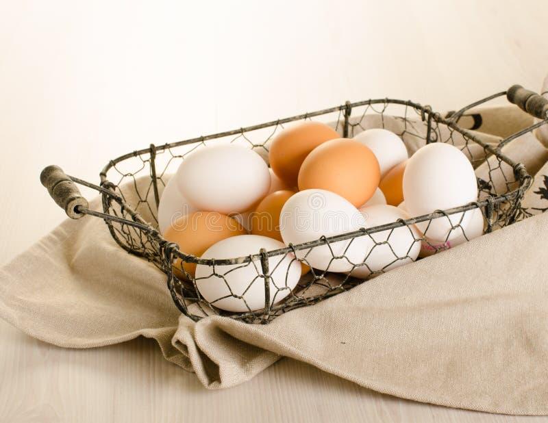 Ägg i metallkorg fotografering för bildbyråer