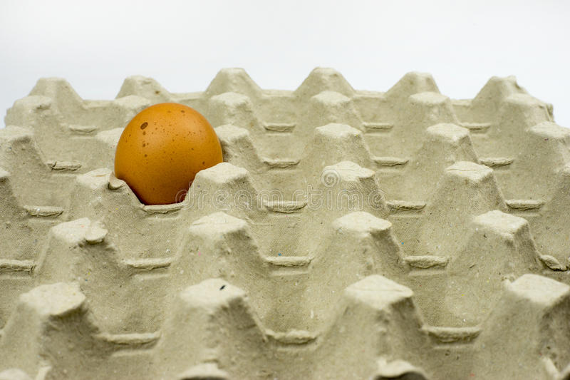 Ägg i pappers- magasin arkivbilder