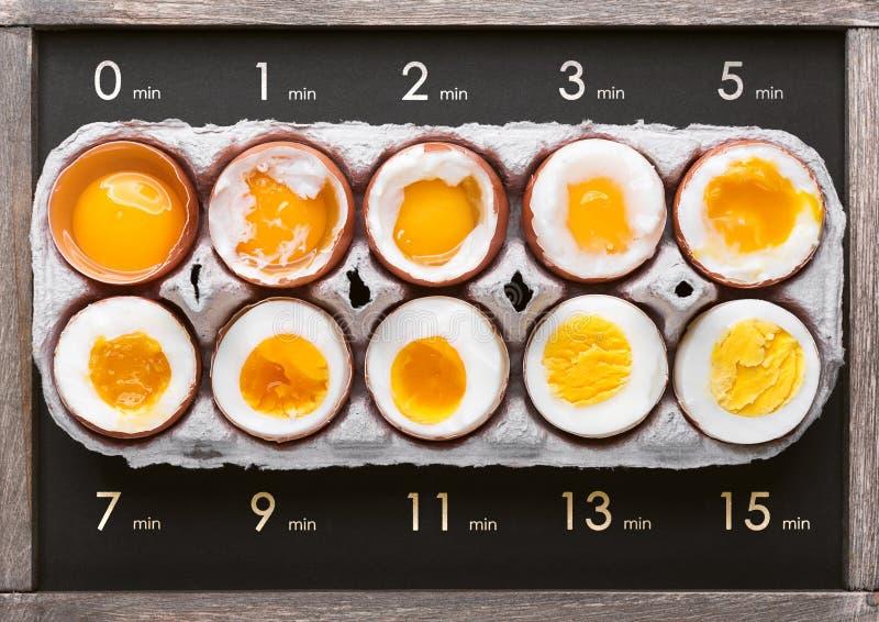 Ägg i varierande grader av tillgänglighet beroende av tiden av kokande ägg arkivbilder