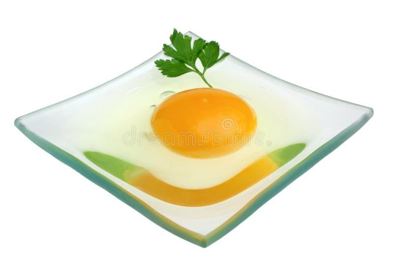 ägg isolerat rått arkivbild