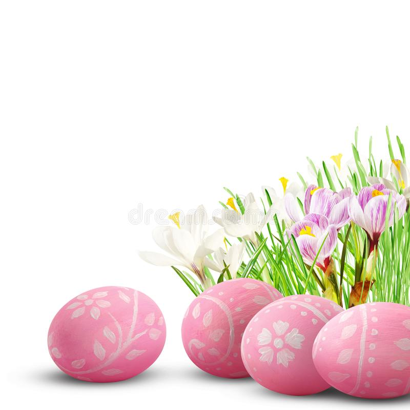 Ägg, knäpp blomma och randig torkduk royaltyfria foton