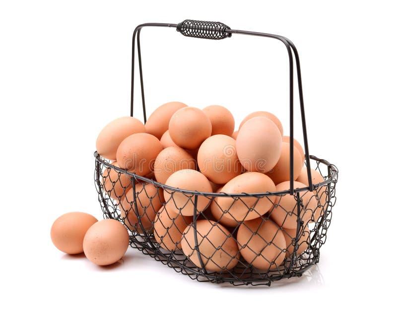 Ägg och äggkorg royaltyfri bild