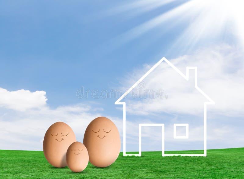 Ägg och ett hus i fält arkivbild
