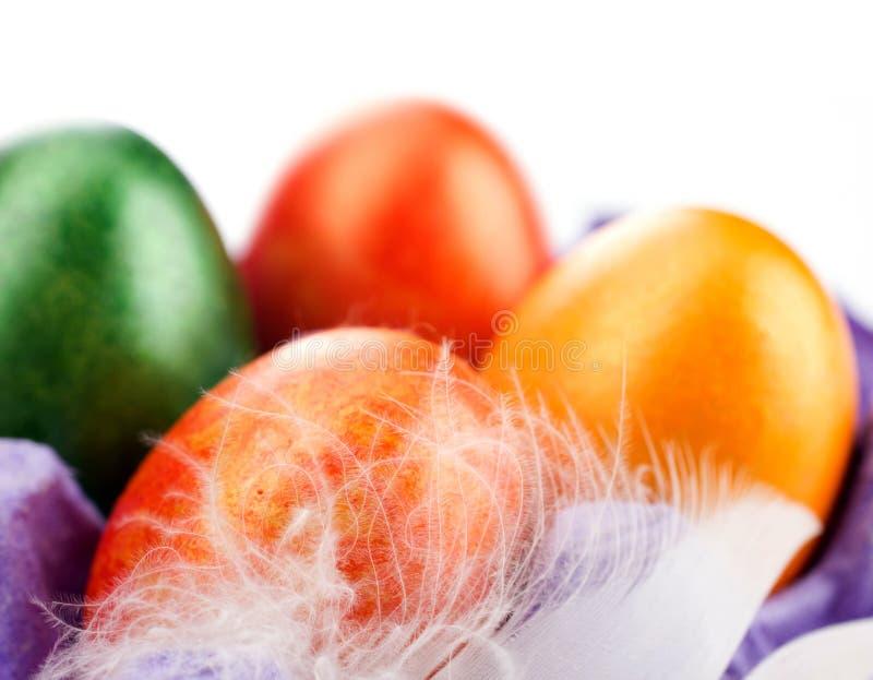 Ägg och fjäder royaltyfria foton
