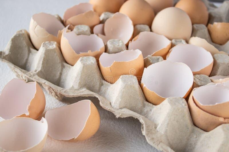 Ägg och shkarlupahalvor av ägg i ett magasin royaltyfria bilder