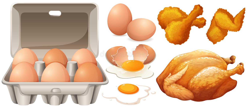 Ägg och stekt kyckling stock illustrationer