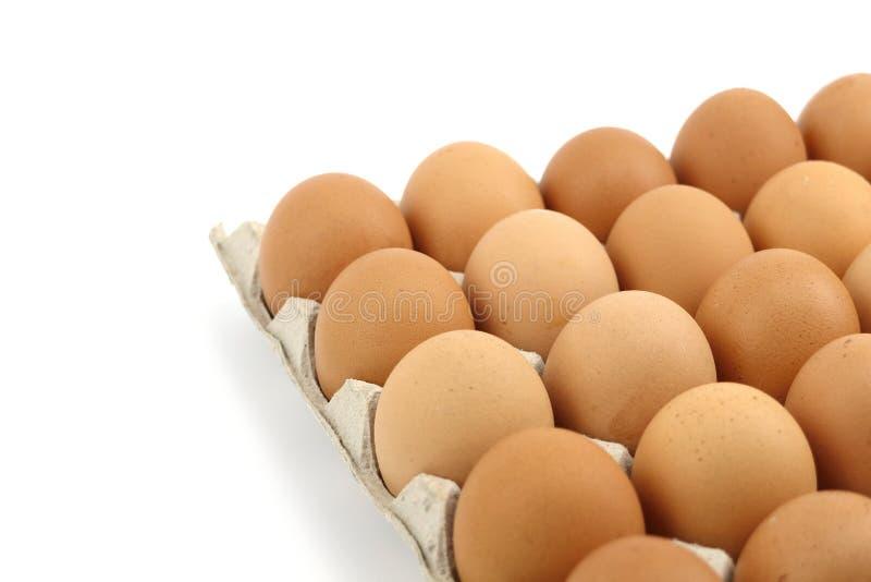 Ägg på magasinet arkivbild