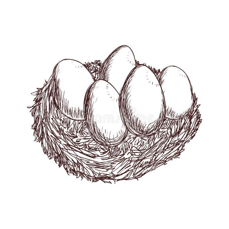 Ägg skissar den sunda matsymbolen för lantgården som stylized swirlvektorn för bakgrund det dekorativa diagrammet vågr royaltyfri illustrationer