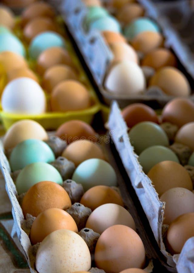 Ägg som är till salu på bondens marknad arkivfoton