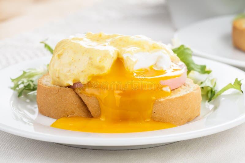 Ägg benedict royaltyfri foto