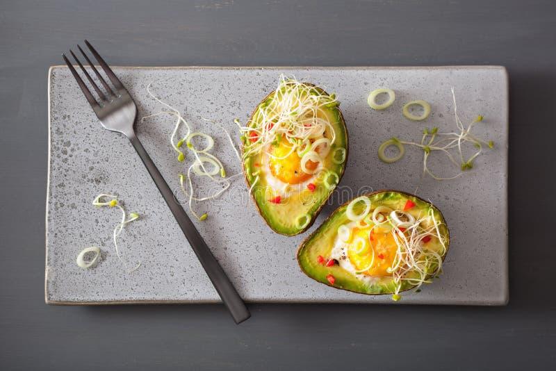 Ägget bakade i avokado med vårlök- och alfalfagroddar royaltyfria bilder