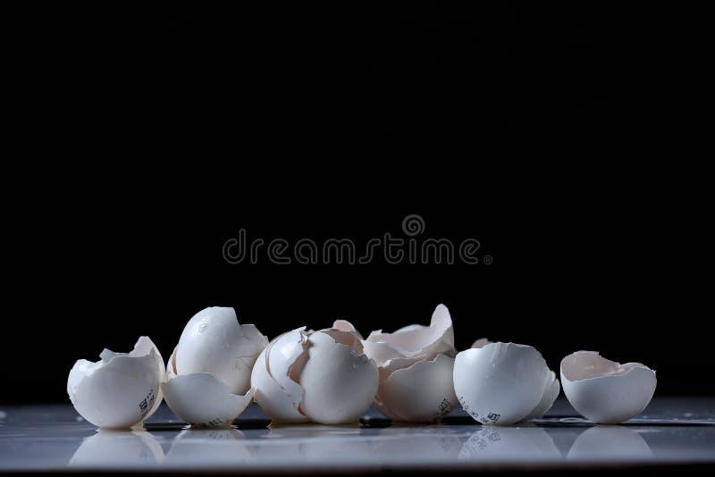 Äggskal fotografering för bildbyråer