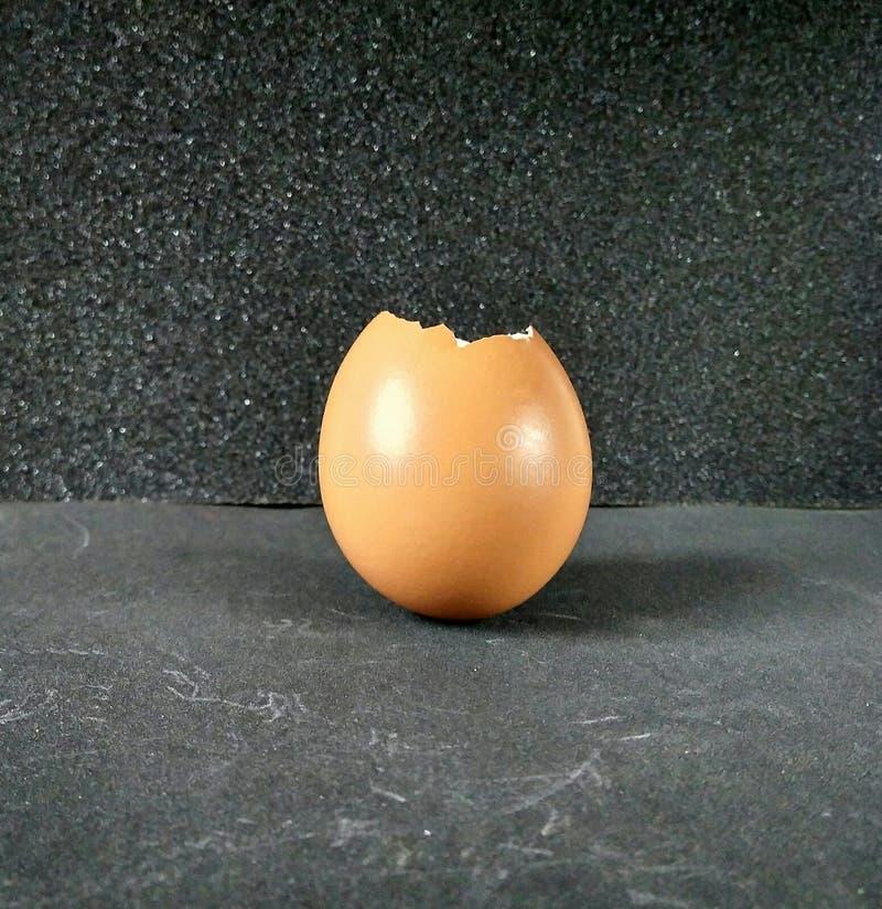 Äggskal av ägg arkivfoto