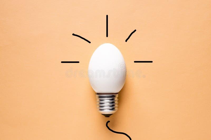 Äggskal för ljus kula på grundbegreppsenergi - besparing royaltyfria foton