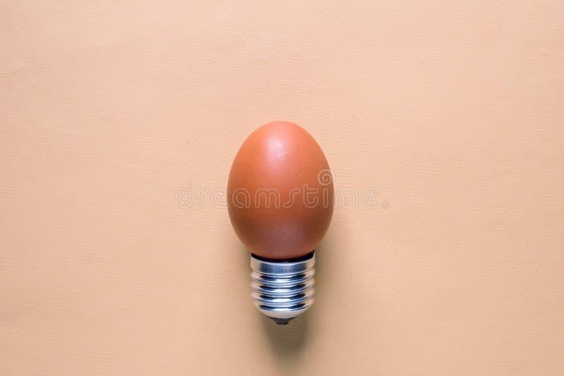 Äggskal för ljus kula på grundbegreppsenergi - besparing arkivfoton