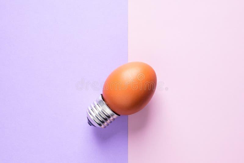 Äggskal för ljus kula på grundbegreppsenergi - besparing royaltyfri foto