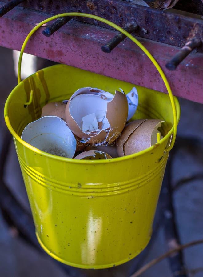Äggskal för trädgårds- kompost fotografering för bildbyråer