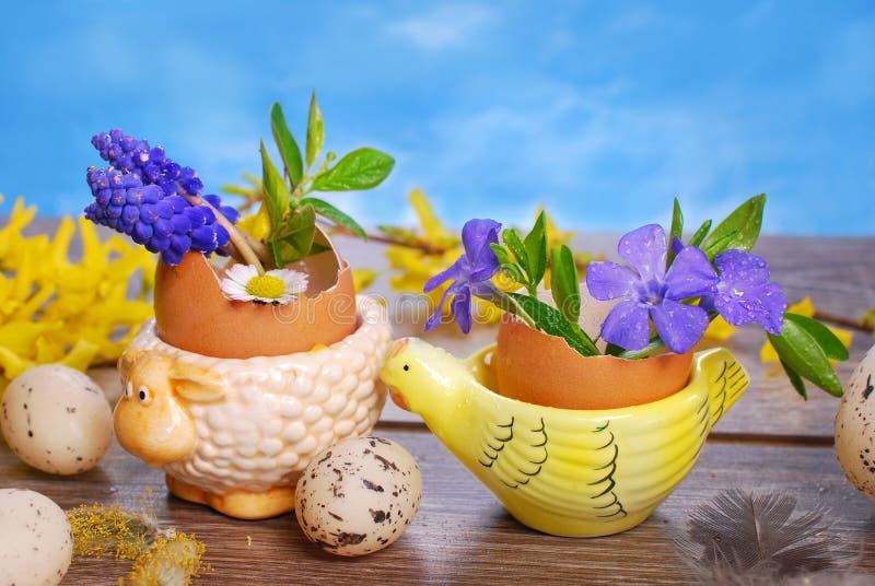 Äggskal med våren blommar i keramiska ställningar för easter royaltyfria foton