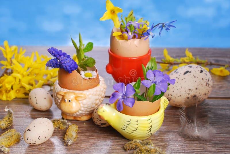 Äggskal med våren blommar i keramiska ställningar för easter royaltyfri foto