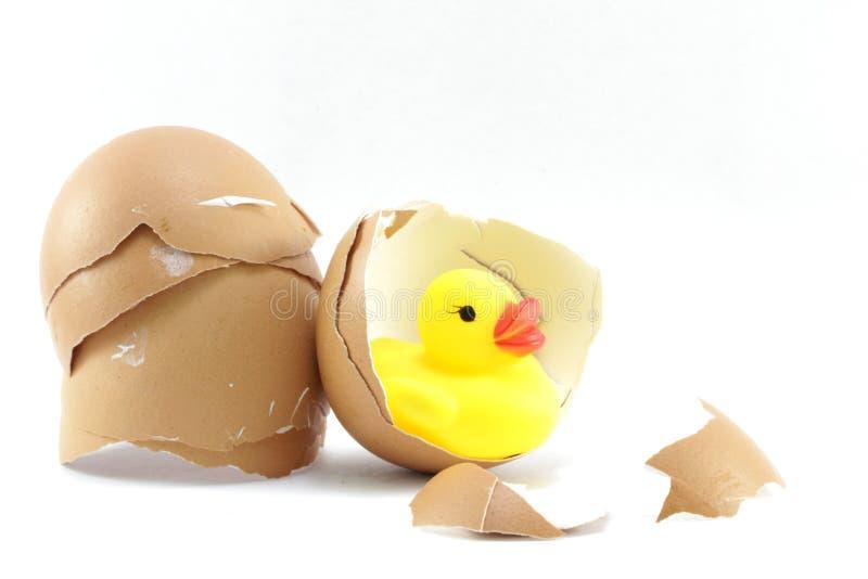 Äggskal och plast- and för guling royaltyfri fotografi