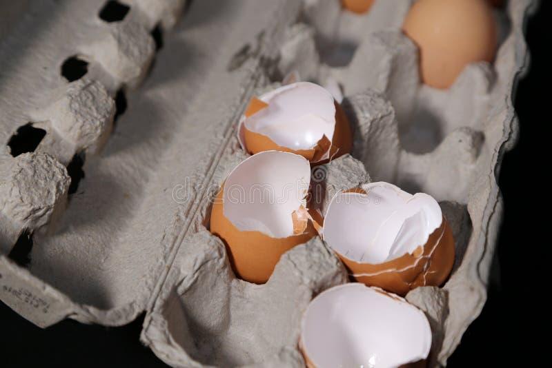 Äggskal och spänning, eller äggskal och mat! arkivbild