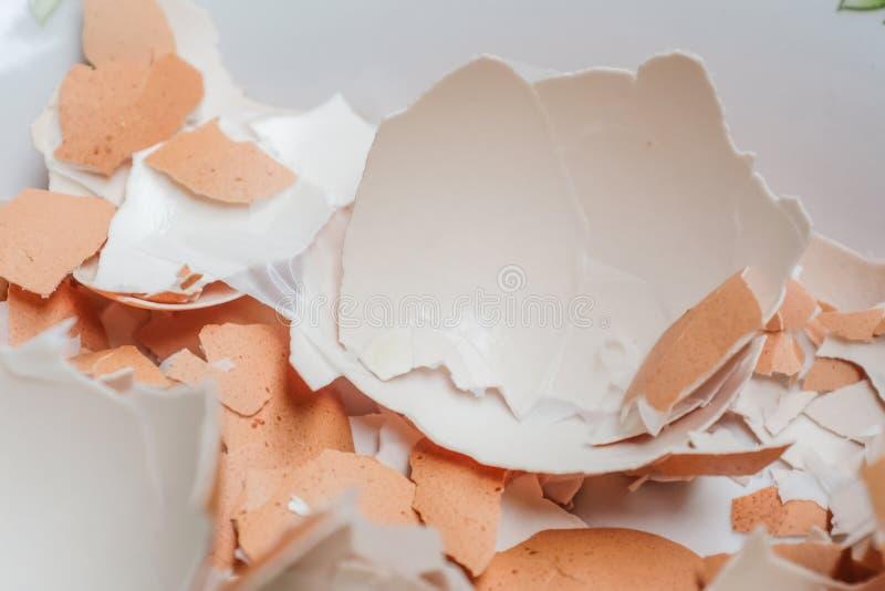 Äggskal som knäckas på vit bakgrund royaltyfri fotografi