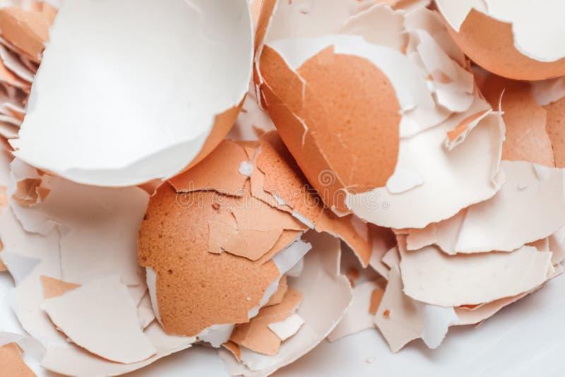 Äggskal som knäckas på vit bakgrund royaltyfri bild