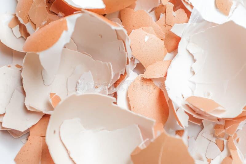 Äggskal som knäckas på vit bakgrund royaltyfria foton
