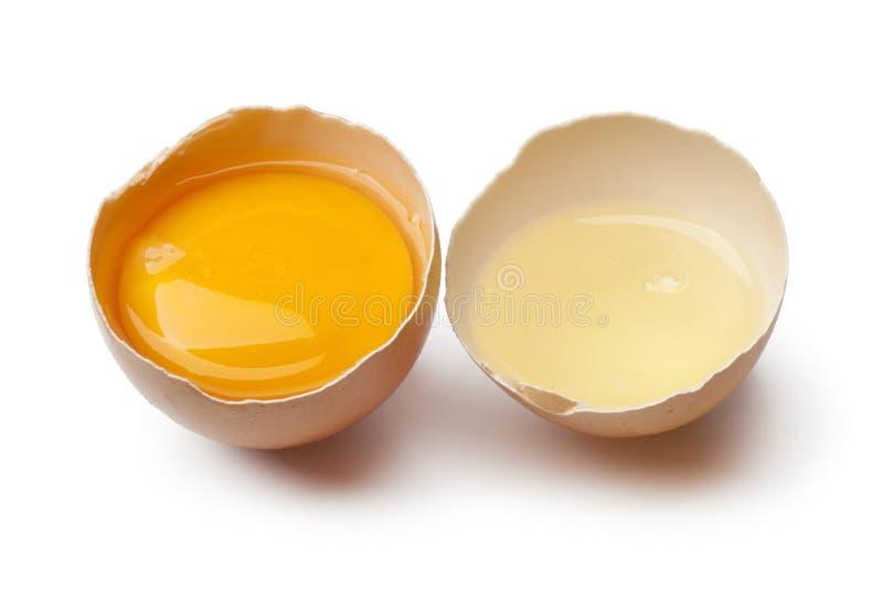 Äggula och vit i ett brutet äggskal