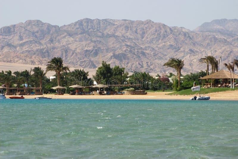Ägypten, Dahab, Sinai-Halbinsel. Rotes Meer. lizenzfreie stockfotos