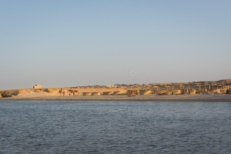 Ägyptische Strände und Sonnenschirme stockbild