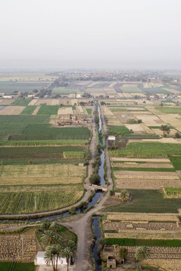Ägyptischer Bauernhof stockfotografie
